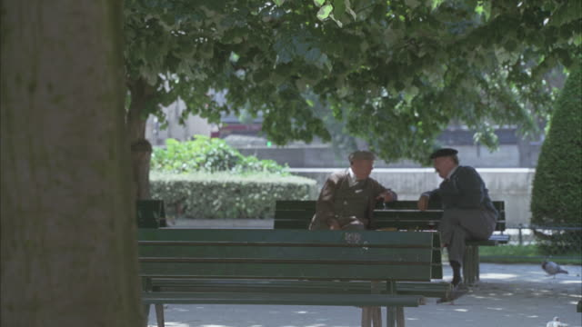 wide angle of a park. could be 1940s or 1950s. two elderly men chatting on a park bench. pigeons, trees. - wide angle stock videos & royalty-free footage