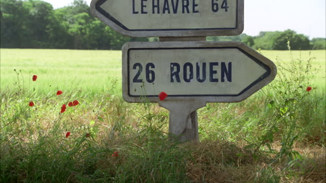 medium angle of a vintage 1950 buick roadmaster station wagon car driving by the french countryside road. trees, grass, brush, flowers with road sign indicating directions and kilometers for le havre and rouen, france. blue sky. - anno 1949 video stock e b–roll