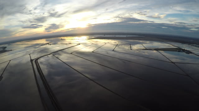 aerial flying over flooded rice fields northern calif - rice paddy stock videos & royalty-free footage