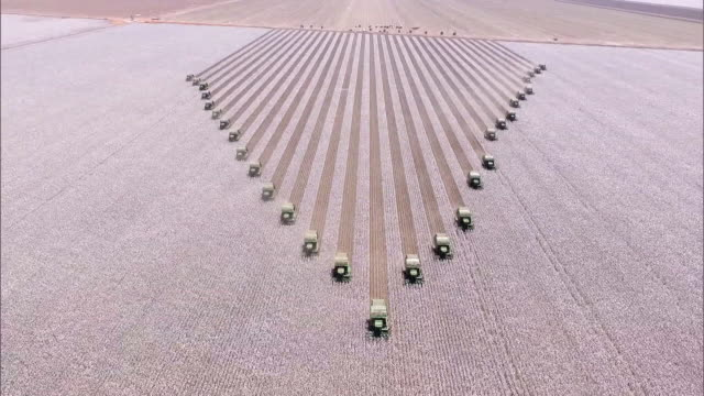cotton harvesting - aerial view - cotton stock videos and b-roll footage