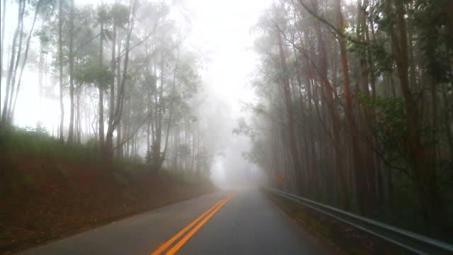 brazil - serra da mantiqueira - verkehrsweg stock-videos und b-roll-filmmaterial