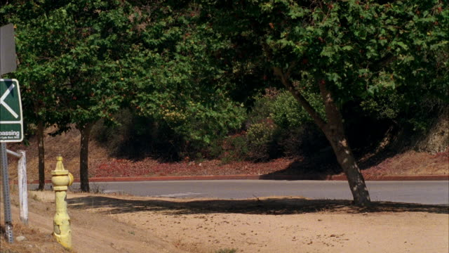 pan left to right of winding mountain road as white lincoln towncar is pursued or chased by black lincoln town car. griffith park. trees line road. - lincoln town car stock videos and b-roll footage