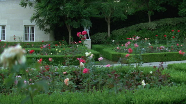 medium angle of garden with roses, flowers, hedges, bushes or shrubs. upper class. at fleur de lys mansion. los angeles area. - fleur de lys stock videos & royalty-free footage