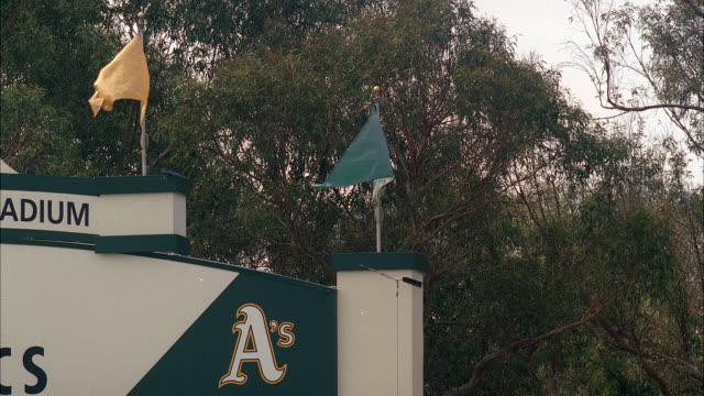 medium angle of flags waving on top of oakland athletics scoreboard. spring training baseball field, phoenix municipal stadium in phoenix, arizona. trees in bg. - spring training stock videos & royalty-free footage