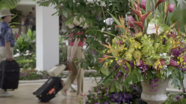 close angle of tropical plant or flowers in lobby or hallway of upper class hotel or resort. guests with luggage and suitcases walk by. grand wailea hotel. - guest stock videos & royalty-free footage