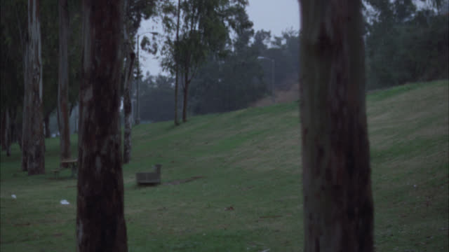 up angle, tracking shot of 1973 ford mustang ii driving on wet road on rainy day. grassy, hilly roadside with trees and dog wagging its tail visible in far bg at left, end of clip. - ford mustang stock videos and b-roll footage