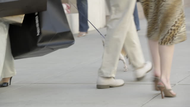 medium angle of pedestrians, shoppers, or tourists walking on sidewalks of rodeo drive in beverly hills. woman with many shopping bags and chihuahua dog visible. - beverly hills bildbanksvideor och videomaterial från bakom kulisserna