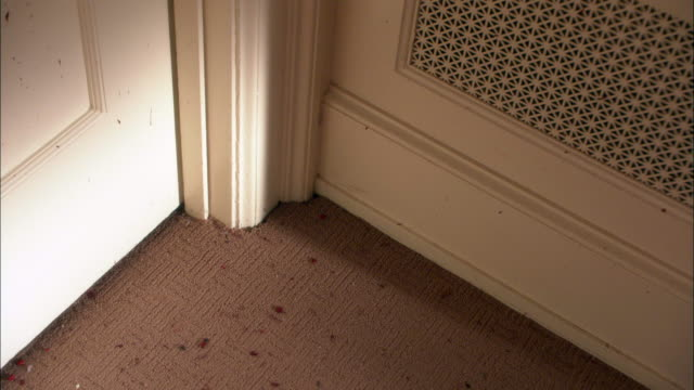 close angle of carpet with blood splatters. camera pans up to wall with blood and gore on picture frames. could be crime scene or murder. picture frame falls to floor. - bloody gore stock videos & royalty-free footage