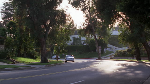 vídeos y material grabado en eventos de stock de wide angle of upper class residential street. could be westwood or beverly hills. car driving on street. neighborhoods. - westwood neighborhood los angeles