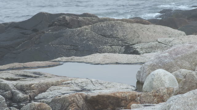 CLOSE ANGLE OF ROCKS ON SHORE. COULD BE TIDEPOOL. COULD BE BEACH. COULD BE LAKE OR OCEAN.