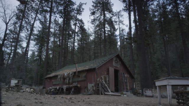 wide angle of wooden cabin, shack, or shed in woods or forest. could be for hunter or trapper. animal skins and furs. pine trees. - shack stock videos & royalty-free footage