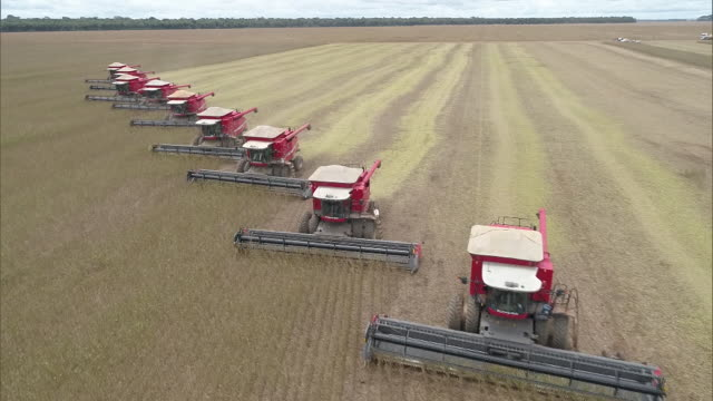 vidéos et rushes de agriculture machines working on soil - brésilien