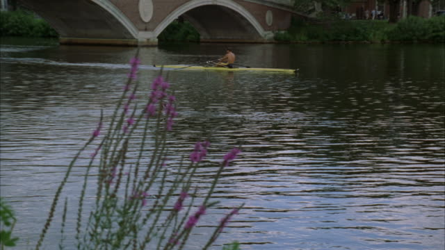 pan up from close angle of charles river to man rowing sculling boat from left to right. harvard university campus in bg. college campuses. - river charles stock videos & royalty-free footage