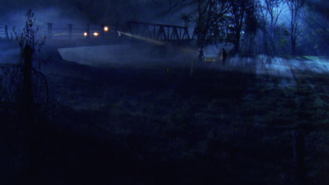 wooded area with light fog on the ground. police car on bridge in bg with headlights on and spot light pointing into woods. two people walk down into clearing. camera slowly moving left - woodland stock videos and b-roll footage