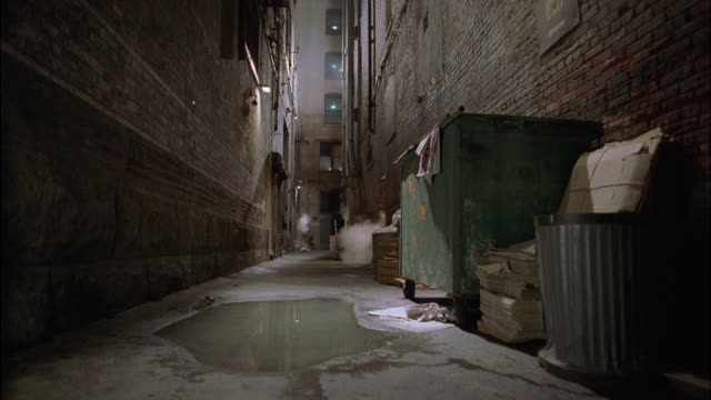 medium angle of abandoned lower class urban alley. puddle of muddy water in fg. garbage cans and dumpster visible. multi-story apartment building and windows in bg. top of dumpster dents inward. could be trick. - stockwerk stock-videos und b-roll-filmmaterial