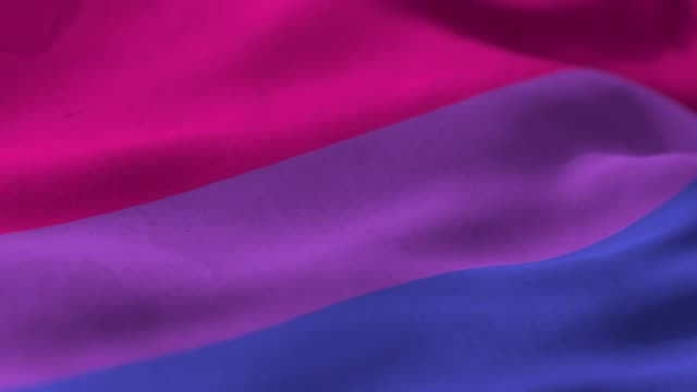 bi pride flag - pink color stock videos & royalty-free footage