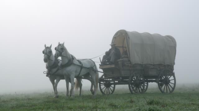 vídeos y material grabado en eventos de stock de wide angle of covered wagon moving through misty or foggy field. could be smoke. - mamífero ungulado