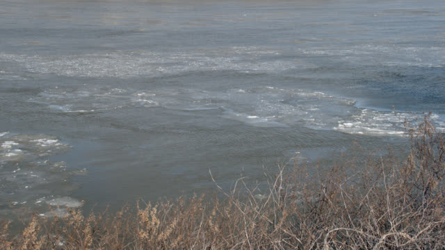 medium angle of ice in river. winter. riverbank partially visible. - riverbank stock videos & royalty-free footage