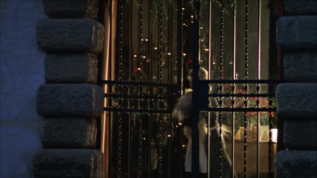 medium angle of black iron gate between stone sidings. lights illuminate in background to see christmas tree. see woman in french maid outfit carrying two small hairy dogs walk outside of gate. see woman put dogs on ground. camera pans left to track woman - black hairy women stock videos & royalty-free footage
