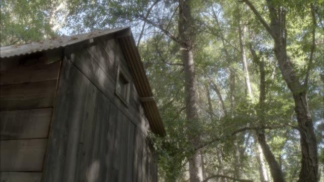 vídeos de stock e filmes b-roll de pan up to chimney of wooden shack or cabin in the woods. trees. - cabana de madeira
