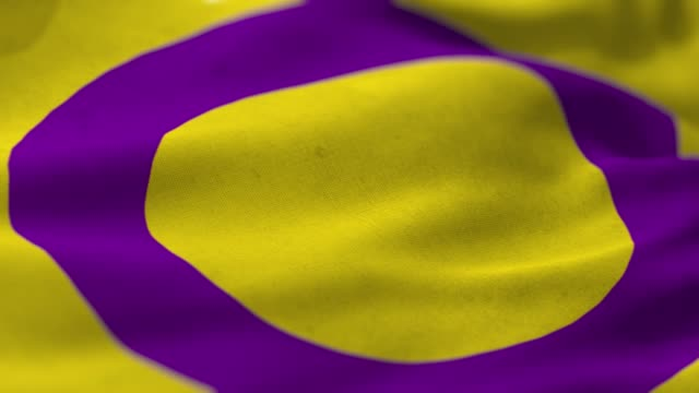 intersex flag - gender symbol stock videos & royalty-free footage