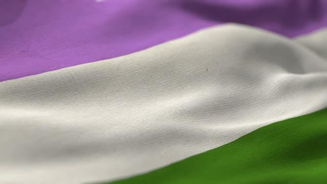 genderqueer pride flag - intersex stock videos and b-roll footage