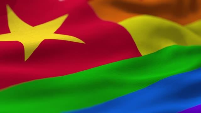 pride flag: vietnam - north vietnam stock videos & royalty-free footage