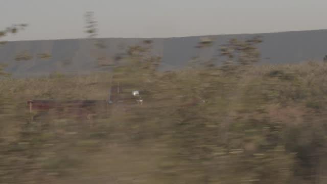 brazil - jalapão - jalapao state park stock videos and b-roll footage