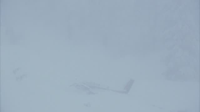 MEDIUM ANGLE ESTABLISH OF TWIN ENGINE WHITE CESSNA AIRPLANE CRASH SITE IN SNOW. COULD BE PRIVATE OR CORPORATE JET OR AIRPLANE. SEE FUSELAGE AND TAIL STICKING OUT OF SNOW. SEE RED COLOR ON TAIL. SEE SNOW COVERED TREE AND FOREST IN BACKGROUND. ACTION.