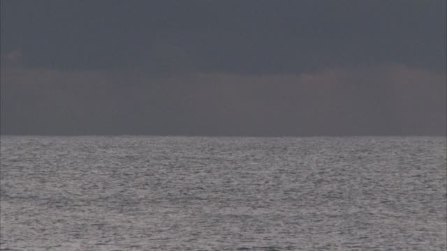vídeos de stock e filmes b-roll de medium angle view of dark and gloomy sky and ocean during storm. dark gray clouds above and choppy water and waves at sea. - territórios ultramarinos franceses