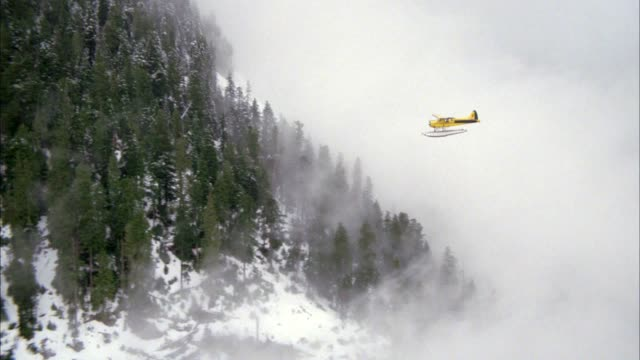 vídeos de stock e filmes b-roll de aerial plane-to-plane tracking shot of yellow seaplane or airplane flying over mountains covered with pine trees and snow. sky is foggy or cloudy. forests. - pine