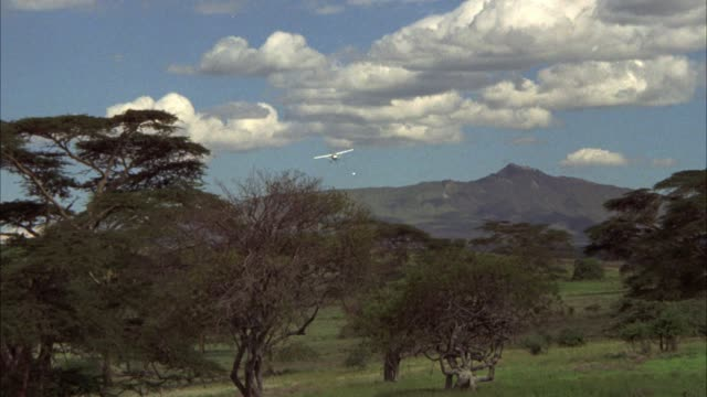 UP ANGLE OF SMALL SINGLE ENGINE AIRPLANE FLYING OVER FIELD OR PLAINS WITH TREES, GRASS IN FG AND HILLS IN BG. COULD BE AFRICA. VELDT.