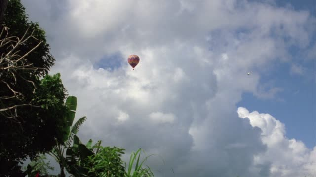 up angle of hot air balloon flying in sky. plants, palm trees, trees, vegetation, plants in fg. clouds. could be tropical island or jungle. - stillahavsöarna bildbanksvideor och videomaterial från bakom kulisserna