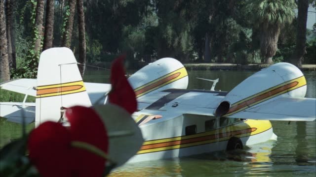 medium angle of seaplane floating in tropical lagoon or lake water with red flowers in foreground and palm trees in background. - 水上飛行機点の映像素材/bロール