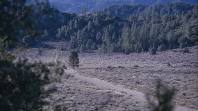 vidéos et rushes de zoom in on stagecoach being followed by men on horseback riding on dirt path through field or clearing in forest. trees, pine trees in bg. cowboy,  pioneers, carriage, wild west, western. - wagon