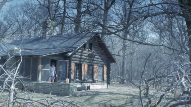 wide angle of log cabin in woods or forest. cabins looks deserted or abandoned. bare trees. boy opens door and walks outside. cat sits on stone wall. - holzstamm stock-videos und b-roll-filmmaterial