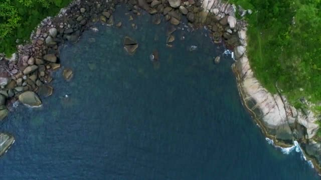 stockvideo's en b-roll-footage met atlantic forest - serra do mar - mar