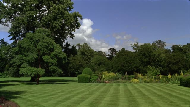 wide angle of lawn with hedges and garden. trees. could be upper class residence. - 庭点の映像素材/bロール