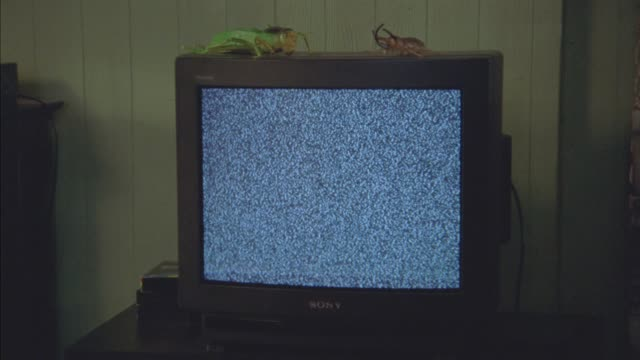 medium angle of television monitor or screen with static. lizard models or toys on top of television. vhs tapes on table next to tv. could be in bedroom. - di archivio video stock e b–roll