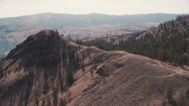 stockvideo's en b-roll-footage met aerial of wilderness area. dry, arid hills covered in trees. could be forest. could be national park. camera focuses on cliff  or pointe. - wyoming