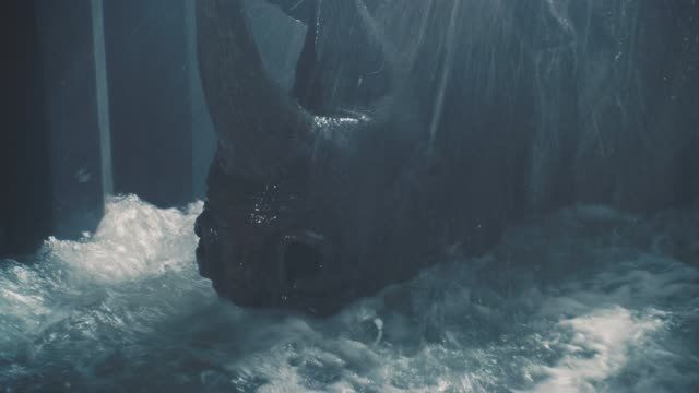 close angle of rhinoceros in cage or crate on cargo ship while it floods with water. trapped. could be while ship is sinking. drowning. - rhinoceros stock videos & royalty-free footage