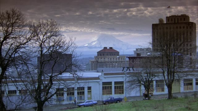 medium angle shot of commercial area.  several buildings in middle ground and mount rainier visible in background. trees visible in foreground. pedestrian walks in front of buildings. birds fly across screen from right to left. - pierce county washington state stock videos & royalty-free footage