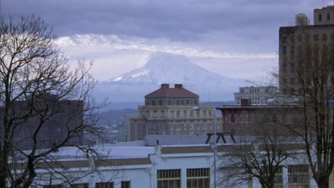 wide angle of downtown area with several buildings in foreground, mount rainier in background. birds seen flying across screen from right to left. mountains. - pierce county washington state stock videos & royalty-free footage