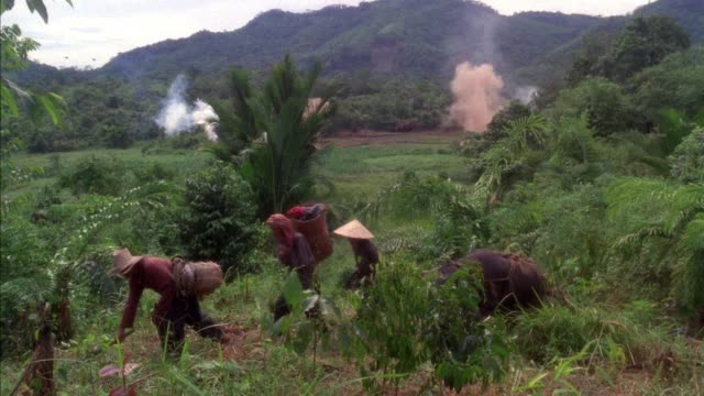 MEDIUM ANGLE OF JUNGLE WITH BUSHES. SEE SMOKE RISING FROM TWO POINTS IN BACKGROUND. SEE VILLAGERS, NATIVES, OR TOWNSFOLK WALK RIGHT TO LEFT IN FOREGROUND THROUGH BRUSH, ONE MAN CUTTING BRUSH WITH MACHETE. SEE WATER BUFFALO. TWO MORE EXPLOSIONS IN BACK. SE