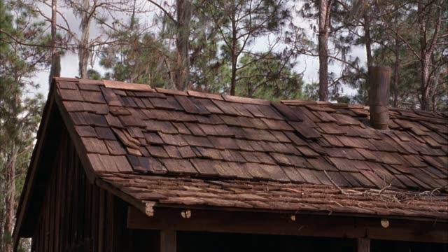 medium angle of shingled rooftop on small wooden cabin or shack in forest. see shingles on left side of roof blow off from explosion inside cabin. see flames coming through hole in roof. explosions. fires. - shack stock videos & royalty-free footage