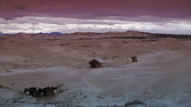 medium angle of canvas tent and campsite on sand dunes. see horses and campfire. man moves around, tending to fire. see other man or men sitting around the fire. see dark, overcast sky, dramatic light on clouds in horizon. see desert landscape. - sandy utah stock videos and b-roll footage