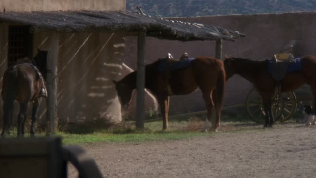 medium angle of horses outside of barn or stable. dust blows from left to right across frame. wagon in left foreground. woman dressed as cowboy handles horses, then walks behind stable. pulls back and zooms in several times. - pferdestall stock-videos und b-roll-filmmaterial