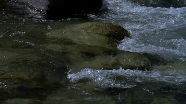pan left to right of shallow stream or river flowing to right. rocks underneath surface, water flows around rocks as frame pans right. slow motion. - nevada stock videos & royalty-free footage