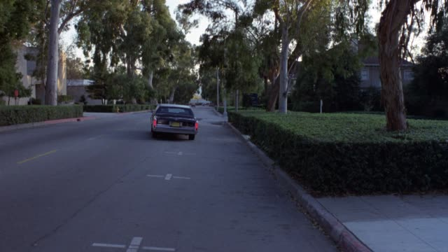 wide angle of person entering black cadillac limo. car drives away as shot pans up. hedges and trees line sides of street. could be college campus or private school, gated community. car has yellow license plate with black lettering, indicating arizona. l - limousine stock videos & royalty-free footage