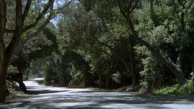 medium angle of winding country road with trees on both sides. mailbox visible on right side of road. light green 1950's era classic car enters frame and drives toward background. - mailbox stock videos and b-roll footage
